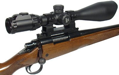 Remington Mount